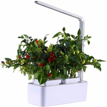 Vaso da fiori per interni Smart Led Light Hydroponic Systems