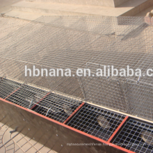 Professional hot dipped galvanized iron mink cage with wooden box
