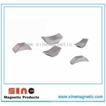 Hot Sale Rare Earth Irregular NdFeB Magnet Permanent NdFeB Magnet