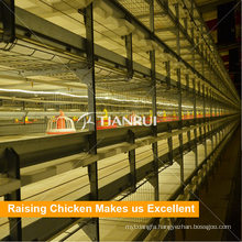 Poultry raising prefab broiler chicken houses with broiler chicken cage