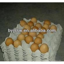 Egg Tray Matériel d'emballage