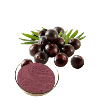 Acai Berry Extract Powder