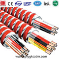 Cable MC 1kv 12-2 AWG Cable blindado BX