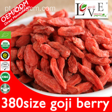 Hot Sale Fruta seca de Goji Berry