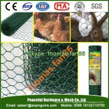 Filetage de volaille en PVC / maillage de poulet / maillage métallique hexagonal