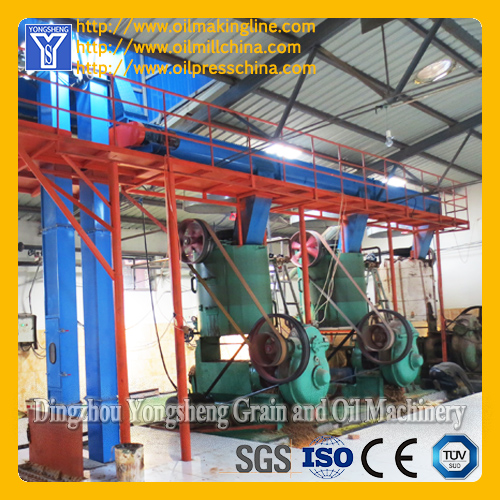 Physical Edible Oil Milling Plant