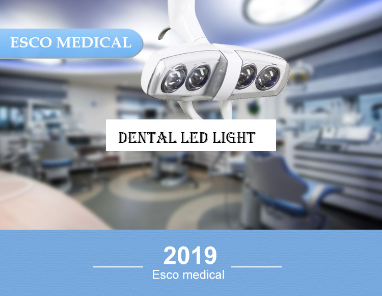 Dental LED light