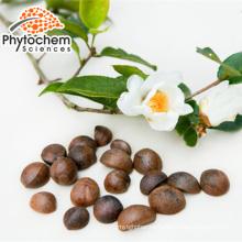 Light Yellow Powder form Oil-tea camellia seed