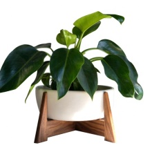 Indoor and outdoor standing Planter Holder stand