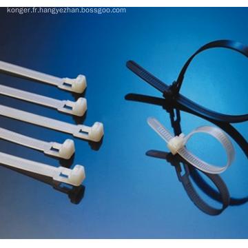 Servo System Injection plastique moulage Machine(KS460)