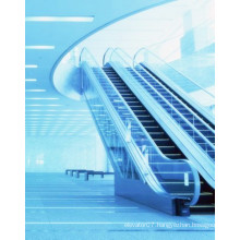 Fujizy Safe Steady and Smooth Running of Escalator Fjf-G6000