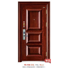 Steel Door (FD-958)