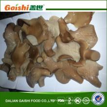 canned/salted abalone mushroom in brine