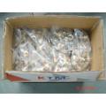 Ktm Pipe Fittings of Tee Female for Pert-Al-Pert Pipe, Pex-Al-Pex Pipe, Aluminium Plastic Pipe, Laser HDPE Pipe, Overlap Pipe for Hot Water and Cold Water