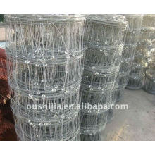 Grillage galvanisé de bovins (usine)