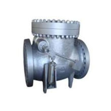 Swing Check Valve with Level and Counter