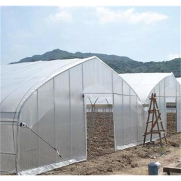 Easy Installation Tunnel Greenhouse
