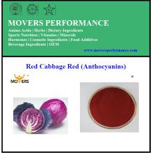 Extrait naturel de chou rouge soluble dans l'eau d'extrait d'usine