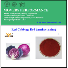 Natural Plant Extract Water Soluble Red Cabbage Extract