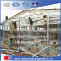 Pullet Chicken Cage with Automatic Raising Equipment