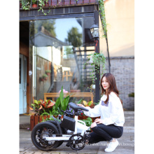 250w Two Wheel City bike conversion kit electric bicycle  pedal bike 16inch Foldable Electric Bike for adults