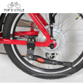 Dobrável E Bicicleta 20 polegada de Bicicleta Elétrica China 300 W Poderoso Cubo Do Motor Da Bicicleta Elétrica