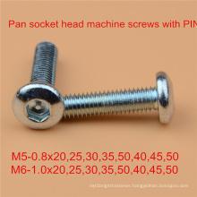 Pin Screw Safety Screw