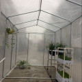 Skyplant Most Popular Compact Walk-in Polytunnel Greenhouse