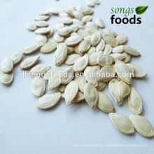 Chia Seed Price With Good Quality