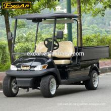 Bateria de Trojan 2 Seater carrinho de golfe elétrico para venda mini carro de buggy de golfe