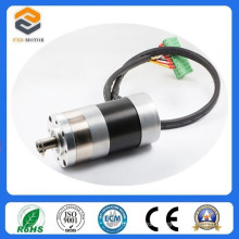 Mini DC Brushless Motors with Gearbox (FXD57BLDC4818)