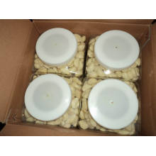Chino ajo pelado fresco (220-260grains / kg)