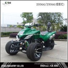 Build Your Own ATV Kits Racing Quad