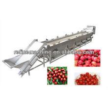 Máquina de classificação de frutas ou legumes