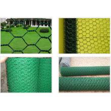 Fil hexagonaux revêtu de PVC Mes en couleur différente