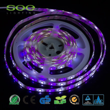 3528 5050 LED Strip Fleksibel SMD