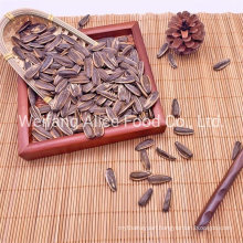 Export Standard Halal Kosher Certificated China Origin Wholesale Raw Sunflower Seeds 363 361