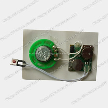 Chip Musical, Chip de Música, Chip de Som, Mini Gravador