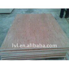 Embalaje usado bintangor madera contrachapada