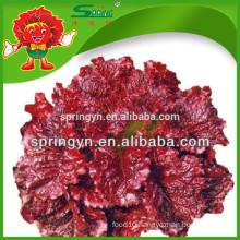 Organic vegetable red leaf lettuce fresh lettuce