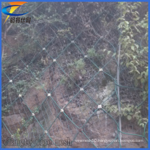 Professional Plastic Sns Slope Protection Mesh