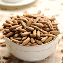 Wholesale Chinese Organic Healthy Dried Fruits Pine Nut ,Pine Kernel