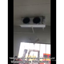 China Factory Price Air Chiller Blast Freezer/Cold Room/Cold Storage