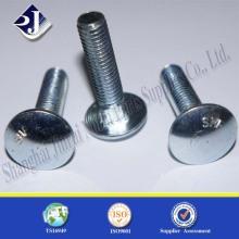 Ss 304/316 Perno cuadrado de cuello cuadrado de cuello redondo