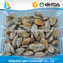 new offer frozen boiled mussel meat with best service and quality assurance