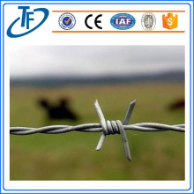 Stainless Twisted Wire Factory