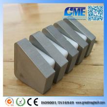 Passen Sie super starken gesinterten unregelmäßigen SmCo Magnete an