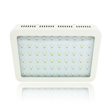 Hydroponics 600W 1000W 1200W LED Grow Light para plantas de interior