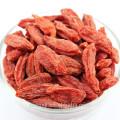 High quality and lower price goji extract powder goji berry extract goji