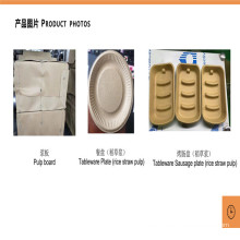 Rice Straw Pulp Biological Pulp Production Line